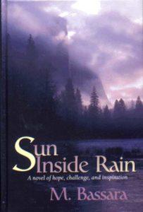 Sun Inside Rain- Book